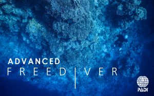 padi-advanced-freediver