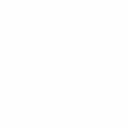 F2 Carbon & Fiberglass Bi-Fins